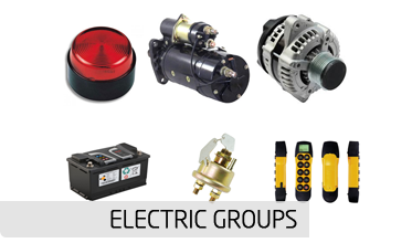 ELECTRIC GROUPS