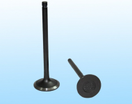 Volvo - Intake and Exhaust Valve